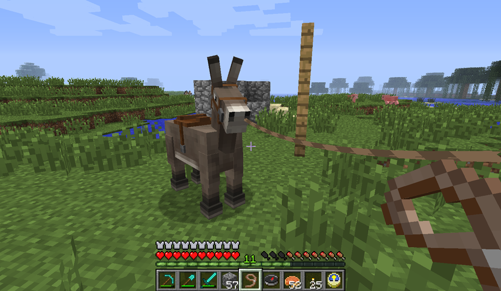minecraft how to grow donkey